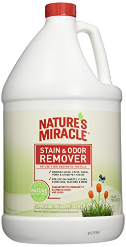 Natures Miracle Remover Flowering Meadow