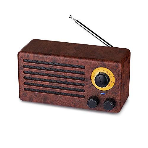 - Retro Bluetooth Speakers, Dual 10W Classic Wireless Speaker with 10-Hour Playing Time, FM Radio, Built-in Mic, Handsfree Call, AUX Line, USB Flash Drive, Micro SD Card, HD Stereo Sound and Bass