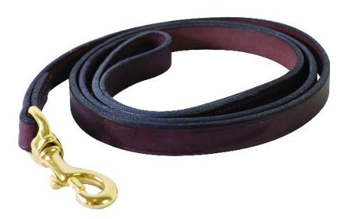 Perri's Plain Leather Dog Leash, Havana, 3/4-Inch x 5-Feet, My Pet Supplies