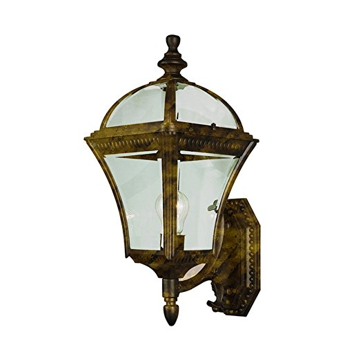 Transglobe Lighting 5083 BG Outdoor Wall Light with Beveled Glass Shade, Black Gold Finished - Gold Finished Iron