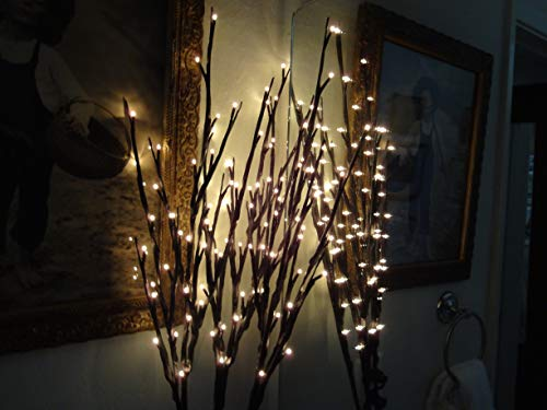 - The Light Garden WLWB96 Electric/Corded Willow Branch with 96 Incandescent Lights, 40 Inch