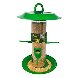 Amijivdaya Large Bird Feeder with Hut, Transparent, Green