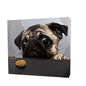 [Wooden Framed] DIY Paint by Numbers for Adults and Kids DIY Oil Painting Kit for Beginners - (16 by 20 inch) - Dog Series (Pug and Cake)