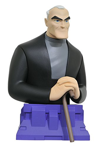 Batman Beyond: Bruce Wayne Resin Figure Bust ()