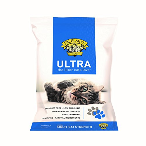 Pack Precious Cat Ultra Premium Clumping Cat Litter 40 Pound Bag (Two Packs)