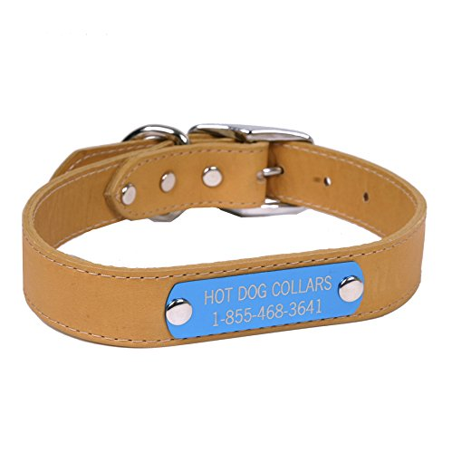 Hot Dog Collars Personalized Leather Dog Collar with Engraved Nameplate, Light Brown Leather, (Leather Nameplate)