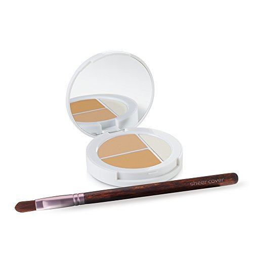 Sheer Cover Studio – Conceal and Brighten Highlight Trio – Two-Toned Concealers – Shimmering Highlighter – Light/Medium Shade – With FREE Concealer Brush – 3 Grams