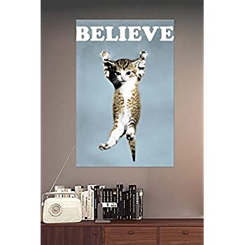 Amazon Com Cat Believe Poster Lego Movie A3 Size Posters