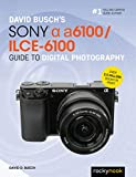David Busch's Sony Alpha a6100/ILCE-6100 Guide to