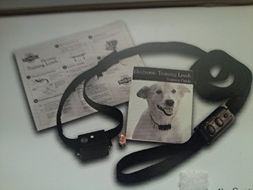 PetSafe Electronic Dog Leash Pet Training System