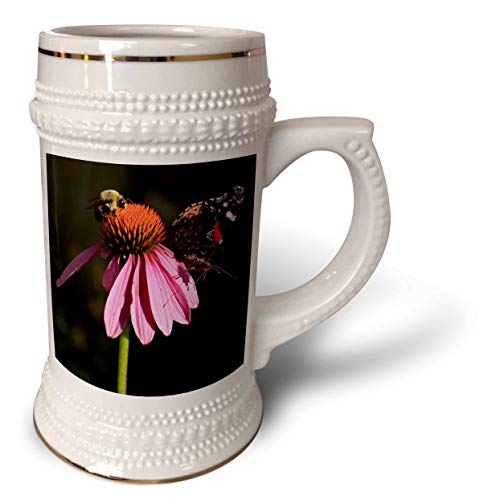 3dRose Stamp City - nature - Photo of a carpenter bee and painted lady butterfly on a coneflower. - 22oz Stein Mug (stn_308701_1)