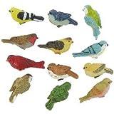 Miniature Birds perfect for Joykick Fairy Gardens, Miniature Birdhouses, And Dollhouse Birds