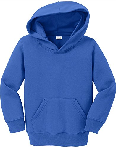 Joe's USA - Toddler Hoodies - Soft and Cozy Hooded Sweatshirts Sizes: 2T, 3T, 4T - Blue Infant Sweatshirt
