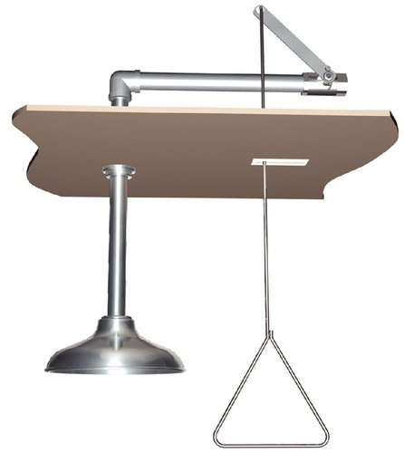 Watersaver Faucet - Ctes629 - Safety Shower Ceiling Ct (each)