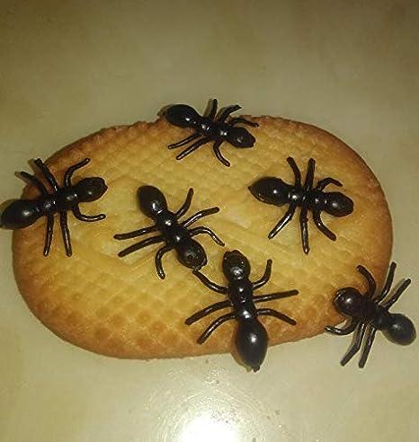 Tomaibaby 20 Piezas Falsas Hormigas Broma Pl/ástico Negro Simulacro Reptil Insectos Hormigas Broma Juguetes Broma Insectos Realistas para Fiesta de Halloween Favorece Accesorios de
