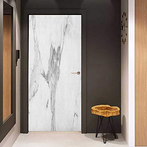 - Toilet Door Sticker Marble Abstract Stained Hazy Pattern Natural Textured Architectural Background Theme Glass Film for Home Office W31 x H79 Grey White Dust