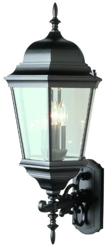 Trans Globe Lighting 51000 BK Outdoor Classical 29.5