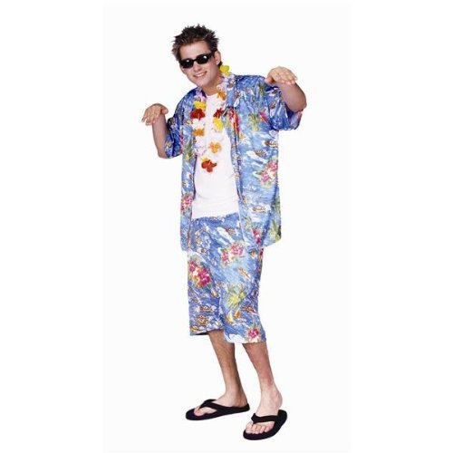 RG Costumes 80189 Standard Adult Hawaiian Top and Shorts Costume