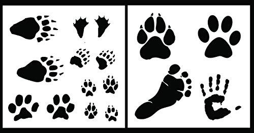 Wild Animal Footprints - 2