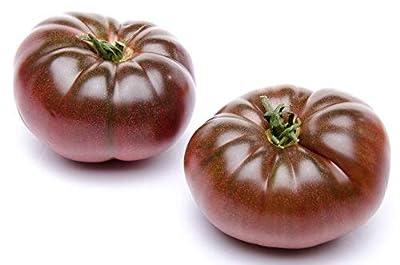 100 Cherokee Purple Heirloom Tomato Seeds by RDR Seeds
