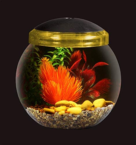 Koller Products 1-Gallon Fish Bowl with LED Lighting (Multiple Color Selections)