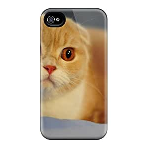 Tpu Phone Cases With Fashionable Look For Iphone 6 Plus