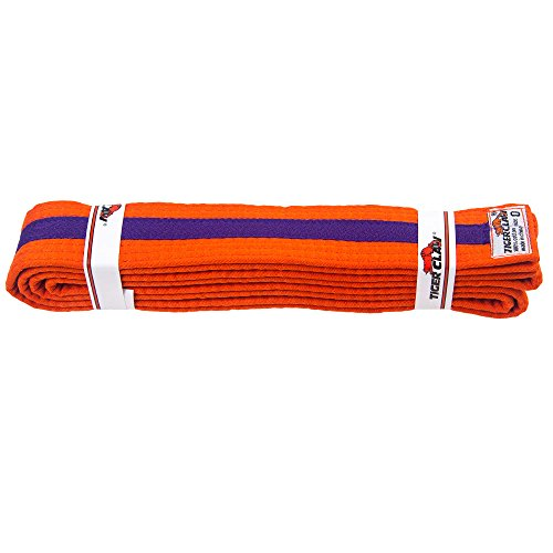 Striped Rank Belts (Uniform Belt - Orange With Purple Stripe #2)