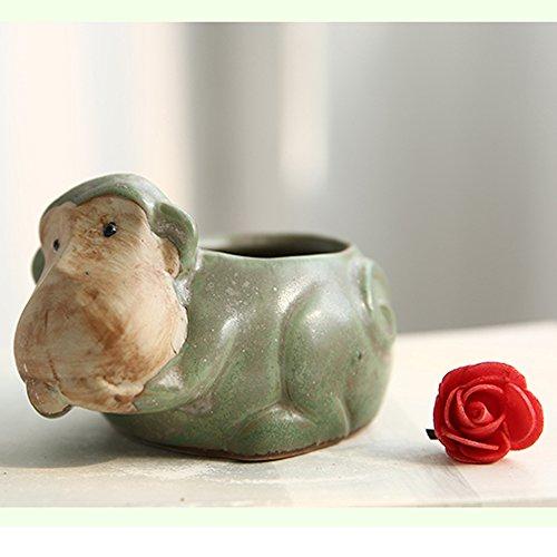 Better-way Monkey Pot Ceramic Succulent Plant Pot Cactus Planter Flower Pot Container Planter Animal Decorative Pots Indoor ()