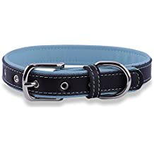 Epic Rogue Soft Padded Leather Dog Collar, Extra Soft Padded Genuine Leather Dog Collar - Bright Multi Color - Perfect for XSmall, Small and Medium Dogs and Cats