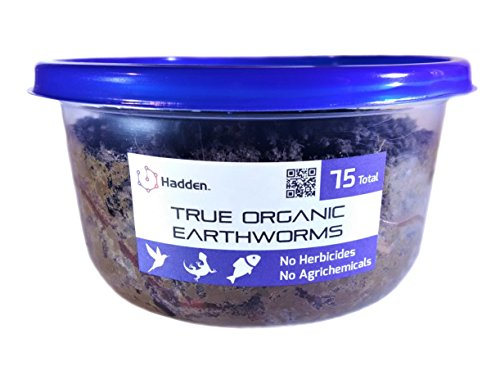Hadden BioFood Techs ミミズ Earthworm 75匹 原産地:香川県の商品画像