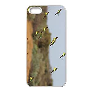 Flying Hight Quality Plastic Case for Iphone 5s