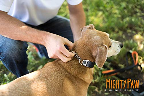 Mighty Paw Martingale Collar, Training Dog Collar, Limited Cinch Chain Pet Gear for No Pull Dog Walking