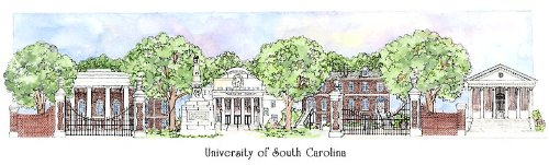University of South Carolina - Collegiate Sculptured Ornament by Sculptured Watercolor Ornaments