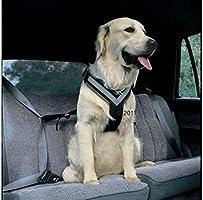 Allsafe Arnés de Seguridad para Perro, arnés de Pecho Grande para ...
