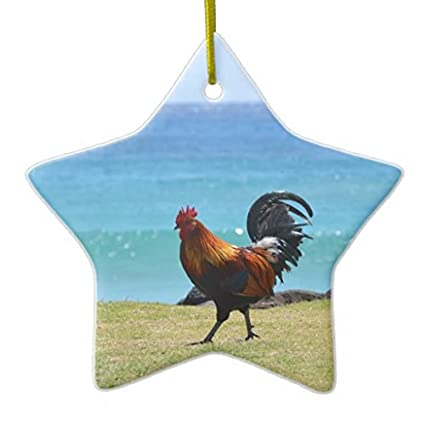 Christmas Ornaments Kauai Rooster Holiday Tree Ornament Both Sides Star  Ceramic Ornament Crafts Christmas Gifts - Amazon.com: Christmas Ornaments Kauai Rooster Holiday Tree Ornament