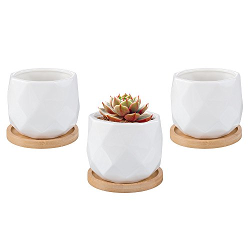 Mkono Small Ceramic Succulent Planters with Bamboo Base Modern Cactus Plant Pot Set of 3 by Mkono