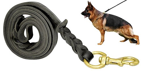 Fairwin Leather Dog Leash Foot