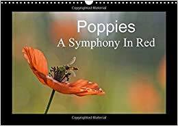 Poppies A Symphony in Red 2017: It is Almost Too Beautiful. the Red Poppies in a Wheat Field Swaying Gently in the Wind, the Buzz of Insects and ... You Throughout the Year. (Calvendo Nature)