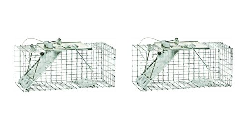 Havahart 1083 Easy Set One-Door Cage Trap for Squirrels and Small Rabbits (Pack of 2) Havahart Squirrel