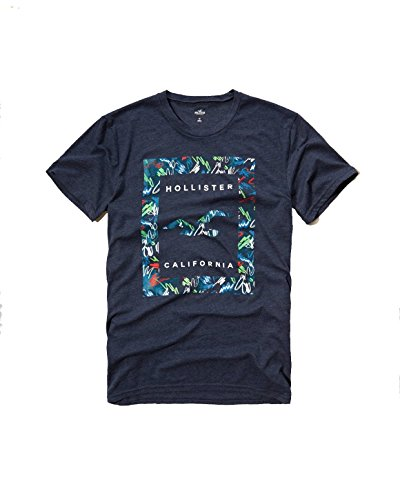 hollister-mens-graphic-logo-t-shirt-small-navy-sig