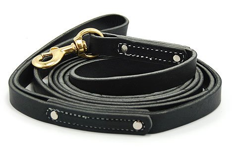 Black 10 ft Leather Leash, My Pet Supplies