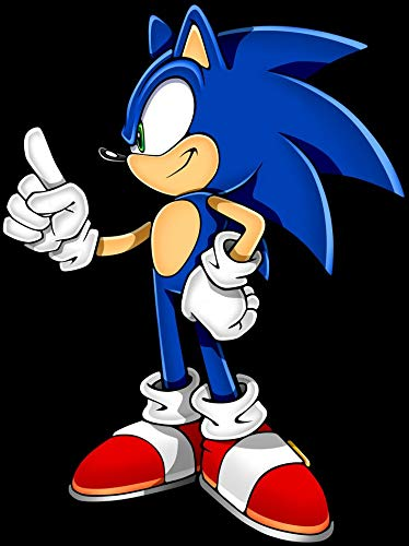 TianSW Sonic The Hedgehog (24inch x 32inch/60cm x 80cm) Waterproof Poster No ()
