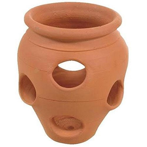 Handmade Terra Cotta Clay Strawberry Jar Planter