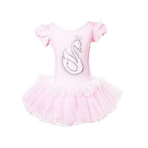 XTS Toddlers Kids Girl Dance Costumes Short Sleeve Swan Tutu Ballet Dress Dancewear (Swan Ballet Costume)