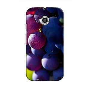 Cover It Up - The Grapes Moto E2 Hard case
