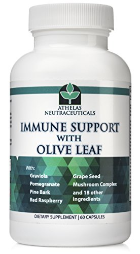 Olive Leaf Extract - Premium Full Spectrum Immune Support - All Natural with Graviola, Red Raspberry, Grape Seed, Quercetin, Antioxidants and Herbals - Full Body Wellness Supplement (Capsules)