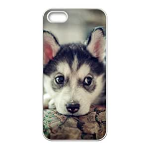 Husky Design Discount Personalized Hard Case Cover for iPhone 5,5S, Husky iPhone 5,5S Cover