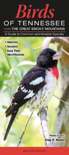 Birds of Tennessee including The Great Smokey Mountains: A Guide to Common and Notable (Tennessee Birds)
