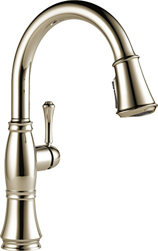 Delta Faucet Cassidy Single-Handle Kitchen Sink Faucet with Pull Down Sprayer, ShieldSpray Technology and Magnetic Docking Spray Head, Polished Nickel 9197-PN-DST