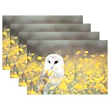 Barn Wood Coffee Table Diy Barn Owl Yellow Flower Table Mats Non-Slip Washable Tablemats Heat/Stain Resistant Kitchen Place Mats for Dining Coffee Easy to Clean (Set of 4)